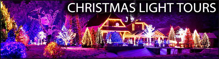 Houston Area Christmas Lights Limo Tour For The Holiday